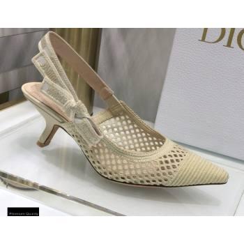 Dior Heel 6.5cm JAdior Slingback Pumps Mesh Embroidery Creamy 2021 (jincheng-21022562)