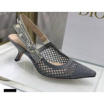 Dior Heel 6.5cm JAdior Slingback Pumps Mesh Embroidery Gray 2021 (jincheng-21022568)